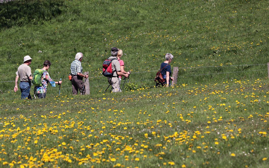Wandern auf dem Habichtswaldsteig (für Betroffene)